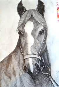 desenhos de cavalos -