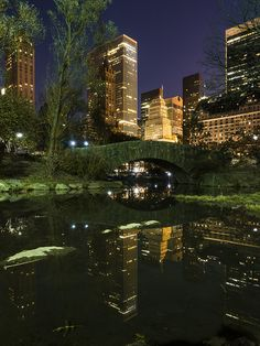 City Reflections, Central Park