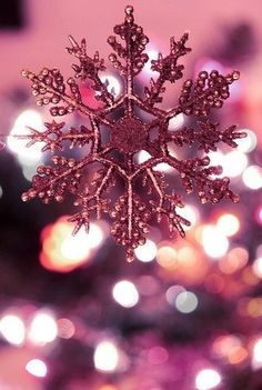 Holiday Iphone Wallpaper, Christmas Phone Wallpaper, New Year Wallpaper, More Wallpaper, Cute Wallpaper Backgrounds, Pretty Wallpapers, Winter Christmas Scenes, Christmas World, Pink Christmas