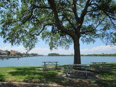 Beautiful Tampa Bay Westshore area Tampa Bay, Outdoor Furniture, Outdoor Decor, Mosaic, Park, Plants, Garden, Beautiful, Home Decor