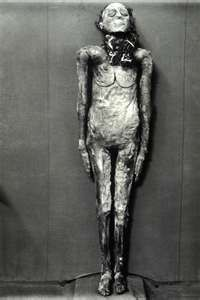Unknown mummy at Cairo Museum, Egypt.