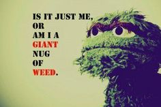 "WEED?  Well, when I see you your friend, Snuffy...Well, he IS invisible to some, right?  And BIG BIRD?  Considering what he looks like, and that he talks?  Those who have been in ""contact"" with you, might be getting ""contact"" HIGHS!!!  Hmmmmm....in answer to your question, my answer would be...YES...lol...it's a possibility that you are one big old NUG....or at the very least....one hell of a hallucination!  LOL LOL LOL."