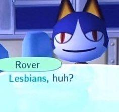 Cute Memes, Dankest Memes, Funny Memes, Anime Meme, Funny Laugh, Haha Funny, Hello Kitty, Animal Crossing Memes, Response Memes