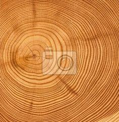 """Fotobehang """"trunk, natuur, life - gesneden houten textuur"""" ✓ Makkelijke montage ✓ 365 dagen voor retourneren ✓ Bekijk andere designs van deze collectie!"""