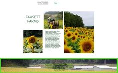 Fausett Farms Sunflowers Blue Ridge Scenic Railway, Best Weekend Trips, Sunflower Fields, Down South, Dream Vacations, Sunflowers, Farms, Acre, Places To Visit