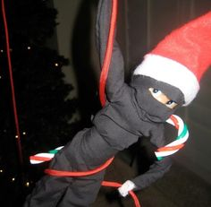 Ninja Elf!  Make costumes??