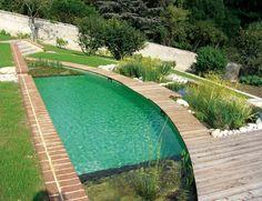schwimmteich selber bauen beruhigend