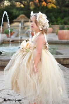 champaign flower girl dress. amazing