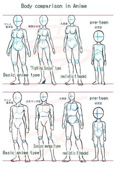 Body Sketches, Anatomy Sketches, Anime Drawings Sketches, Anatomy Drawing, Body Anatomy, Human Anatomy Art, Animal Drawings, Art Drawings, Drawing Body Poses