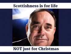 Referendum nonsense  http://www.newsbiscuit.com/2014/08/10/scottish-voters-urged-to-consider-salmonds-big-pleading-eyes/