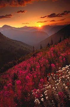 Blue Ridge Mountains #TravelDestinationsUsaMontana