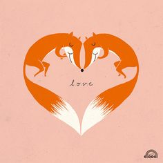 foxes in love!