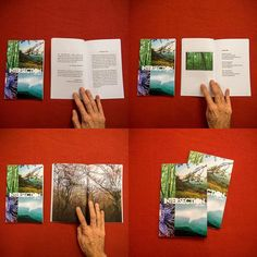 INTERSECTION #lukekurtis #poetry #photogrpahy #book out now! #nature #rural #southern #thesouth #poet #artist