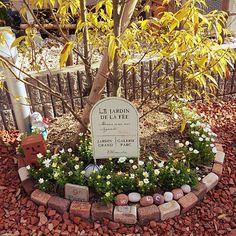Flower Beds, My Flower, Flowers, Grand Parc, Luxury Living, Stone Painting, Garden Landscaping, Garden Design, Home And Garden