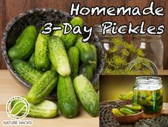 Homemade 3 Day Pickles