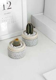 DIY Mini Cactus Plan