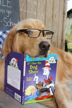Too funny. I have a similar picture with one of my dogs holding my book :)
