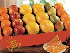 The Sweet Six | Orchard Apples, Comice Pears, Grapefruit & Hale's Premium Oranges - Hale Groves #fall #fruit #gifts