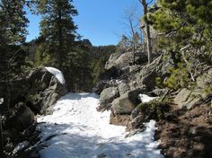Snowshoeing in Golden Gate Canyon State Park: (Upper) Mule Deer & Coyote Trail
