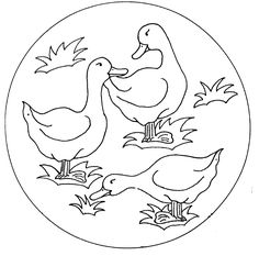 Coloring Pages Of Ducks. Color pages is actually a training that is widely used by parents at home or educators at college to give familiarity with the alphabet Coloring Pages To Print, Colouring Pages, Daisy Duck, Wool Applique, Clip Art, Bird Prints, String Art, Line Drawing, Animal Drawings