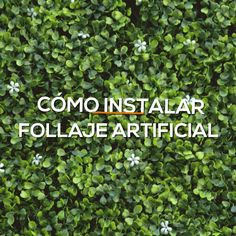 DIY Aprende a instalar paredes verdes de follaje artificial Today is green! Change your smooth walls for one with artificial foliage, it is super easy to install. Garden Design Plans, Garden Landscape Design, Yard Design, Amazing Gardens, Beautiful Gardens, Jardin Vertical Artificial, Artificial Plants, Backyard Landscaping, Landscaping Ideas
