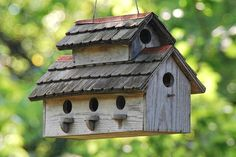 Tips for building bird houses, including what birds need to be attracted to a good, safe bird house.