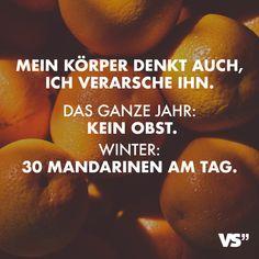 Visual Statements®️ Mein Körper denkt auch, ich verarsche ihn. Das ganze Jahr: Kein Obst. Winter: 30 Mandarinen am Tag Sprüche / Zitate / Quotes / Spaß / lustig / witzig / Fun / Lachen / Humor Visual Statements, Humor, What Is Life About, Me Quotes, Jokes, Lol, Funny Things, Funny Stuff, Gaudi