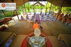 monk meditation บวชเข้าพรรษา บวชฟรี วัดธรรมกาย บวชแสน บวชล้าน บวชเณร บวชระยะสั้น concentration 静座 盘坐 禅定 meditative absorption 单盘坐ภาพดี 072 โครงการบวชพระทุกเดือน: ห้องอาหารกับการเปลี่ยนนิสัย