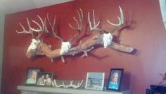 """Deer antler mount. Finally an example for my daddy! Told him that we needed to do this for our """"ugly antlers""""."""