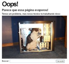 60 Cool and Creative Error 404 Pages - Hongkiat Funny Cat Photos, Funny Animal Pictures, Funny Cats, Funny Animals, Cute Animals, Funny Images, Funniest Animals, Silly Cats, Funny Humor