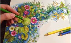 Sharing How I Color The Magical Water Lily Pond With Prismacolor Premier Colored Pencils Coloring Book: Secret Garden by Johanna Basford Colored Pencils: P. Coloring Tips, Adult Coloring, Coloring Books, Coloring Pages, Secret Garden Coloring Book, Colored Pencil Tutorial, Colored Pencil Techniques, Chris Cheng, The Secret Garden