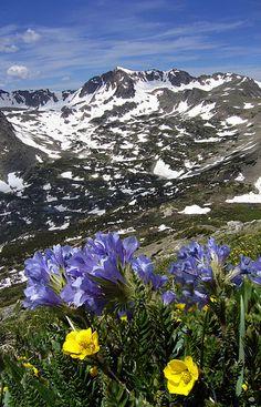 Indian Peaks Wilderness area, Colorado