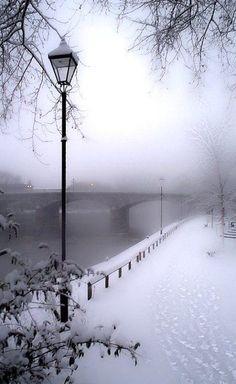 Fascinating Paris in winter