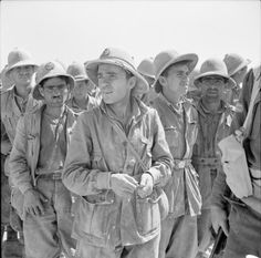 BRITISH ARMY NORTH AFRICA 1942 (E 12735)   German and Italian prisoners ( mostly Italians) captured during recent fighting in Libya, 1 June 1942