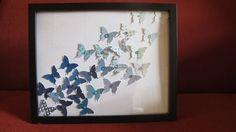 Going Buggy: Ombre Butterflies...