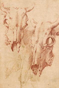 Salvatore Rosa | 1615-1673 | Three Studies of Ox Skulls | The Morgan Library & Museum