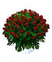 100 Super Roses in Tall Arrangement 3-4 Ft