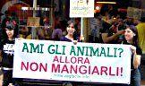 AgireOra - Progetti animalisti, attivismo e volontariato per la difesa degli animali