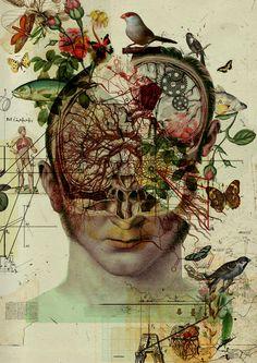 Terra Incognita: The Retro-Futuristic Anatomical Art of Diego Max Collage Kunst, Collage Art, Biology Art, Art Tumblr, Arte Obscura, Medical Art, A Level Art, Retro Futuristic, Arte Horror