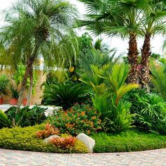 A corner lot landscaping design