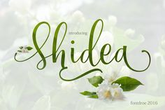 Shidea (pre sales) reg price $25 by fontdroe on @creativemarket