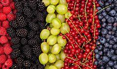 raspberries, blackberries, gooseberries, red currant, blueberries