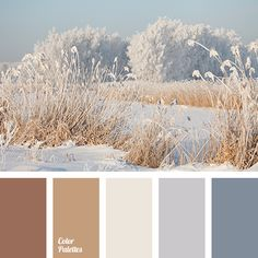 beige, brown, chocolate, color match for home, color palette, grey blue, light brown, shades grey-blue, shades of snow, winter color, winter palette.