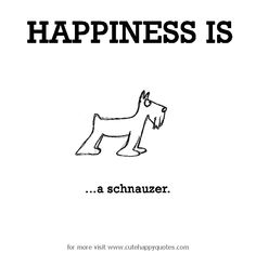 Happiness is, a schnauzer. - Cute Happy Quotes