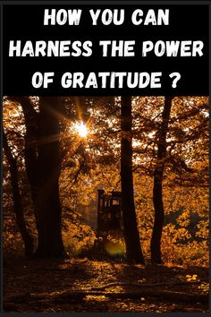 Gratitude is a thankful appreciation for what an individual receives, whether tangible or intangible. grateful thankfulness quotes grateful gratitude day thankful gratitude grateful heart quotes gratitude gratitude law of attraction gratitude in tagalog the secret law of attraction words of gratitude being grateful being thankful #gratitude #lawofattraction