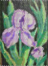 Painted Iris Bead Pattern. This is from a painting I did then translated into a bead pattern. There are about 54 colors, most you can substitute with similar colors. You get a 3D image, color list  bead count. A word chart that is easy to read is included.