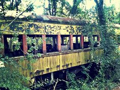 Abandoned Train: Return To Nature by =TemariAtaje on deviantART -- It says it was taken near Williams Grove Speedway in Mechanicsburg, PA