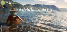 Argentina Tourism, Ph, Mountains, Nature, Travel, Beautiful, Hello December, Viajes, Naturaleza
