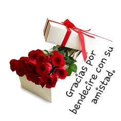 Friends Day, Spanish Quotes, Gift Wrapping, Ali, Flowers, Frienship Quotes, Qoutes Of Life, Love Messages, God Is Love