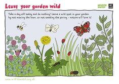 Wildlife Watch - Lots of Nature Activities